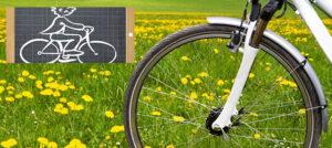 Vélo École, session de printemps